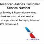 American Airlines Customer Support Chat