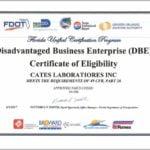 Disadvantaged Business Enterprise Florida