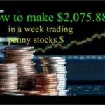 How To Trade Penny Stocks On Robinhood