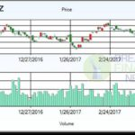 Ivz Stock Target Price