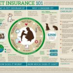Pet Insurance For Dogs Cost