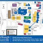 Uf Student Health Insurance Login