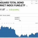 Vanguard Total Stock Market Index Fund Investor Shares Etf