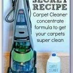 Homemade Carpet Shampoo For Pet Urine