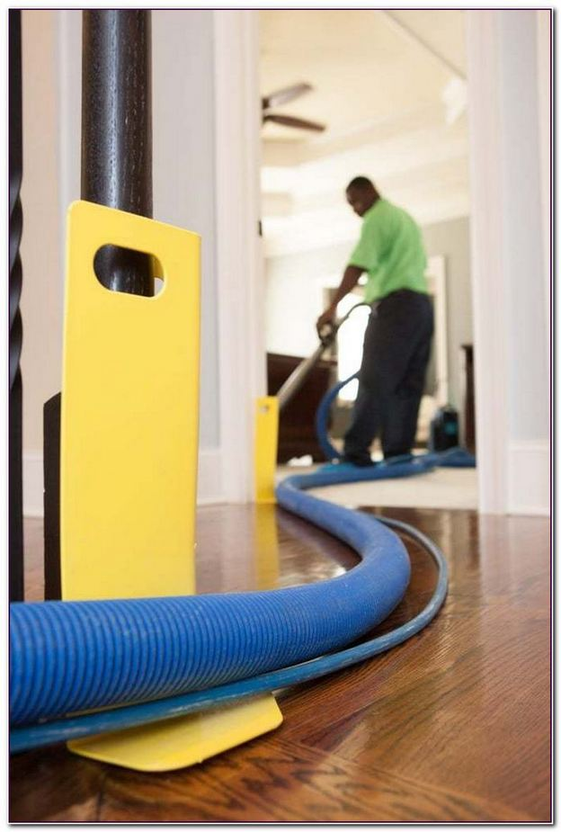 Zerorez Carpet Cleaning Coupons Atlanta